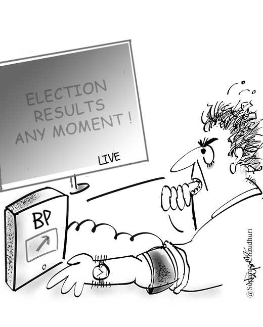 US Presidential Election Results Cartoon